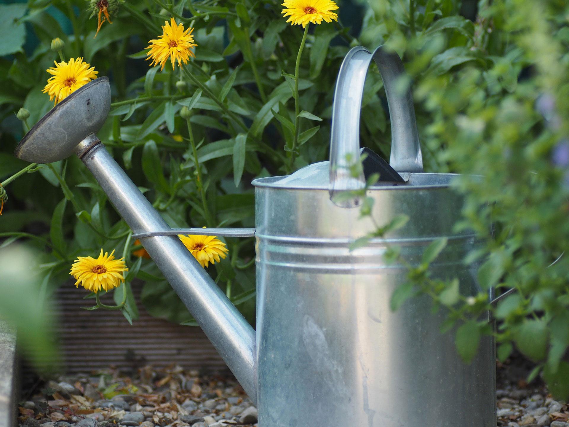 Tatkraft Bernstadt hilft bei der Gartenarbeit